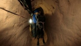 Mbyllja e tuneleve të kontrabandës dëmton Gazën