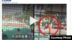 网友提供的疑似董瑶琼放风照片 (苹果日报图片)