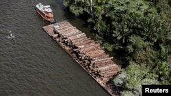 FILE PHOTO - Logs that were illegally cut from Amazon rainforest are transported on a barge on the Tapajos river, a tributary of the Amazon, near the city of Santarem, Para state, April 18, 2013.