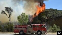 Más de 800 kilómetros cuadrados ha sido quemados por un incendio al norte de Napa Valley, en California.