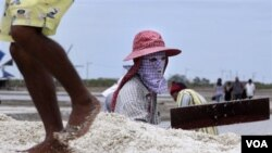 Para petani garam lokal di dalam negeri merasa terpukul dengan membanjirnya garam impor yang membuat pendapatan mereka turun drastis (foto: ilustrasi).