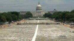 Національну алею США засипали кістками
