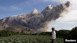 Seorang warga berdiri di ladang kubis saat Gunung Sinabung Gunung menyemburkan asap hitam, terlihat dari desa Pintu Besi di Kabupaten Karo, Provinsi Sumatera Utara di Indonesia, 19 Juni 2015 (Foto: dok).