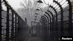 A visitor walks between electric barbed-wired fences at the Auschwitz-Birkenau memorial and former concentration camp November 18, 2013.
