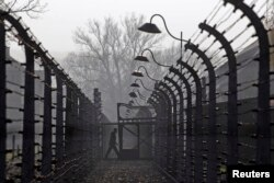 FILE - A visitor walks between electric barbed-wired fences at the Auschwitz-Birkenau memorial and former concentration camp, Nov. 18, 2013.