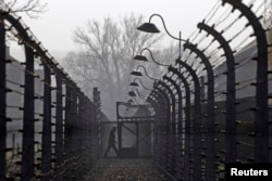 FILE - A visitor walks between electric barbed-wire fences at the Auschwitz-Birkenau Memorial and Museum in Poland, Nov. 18, 2013.