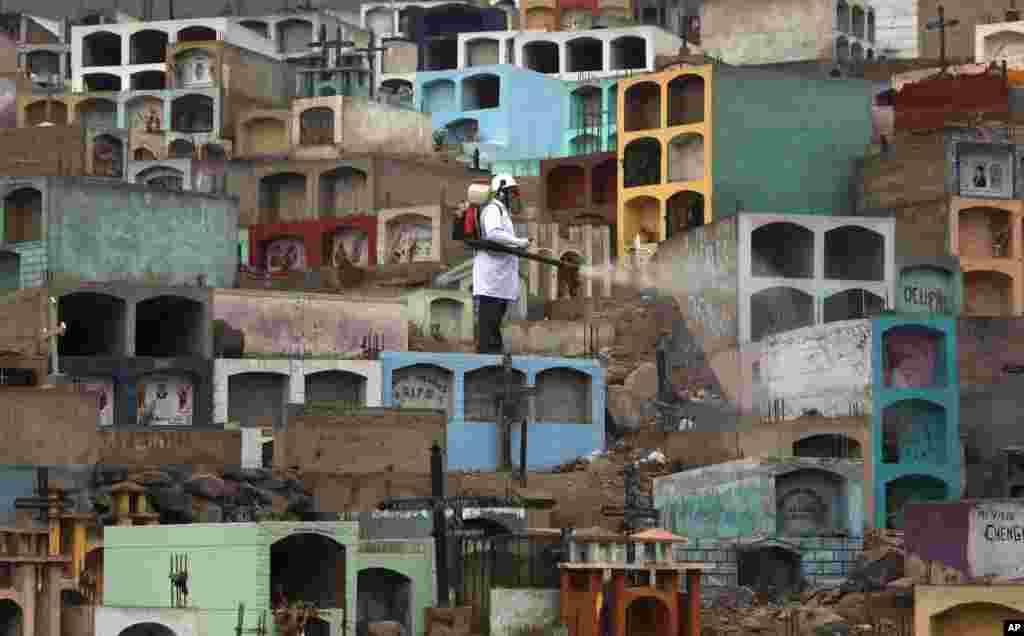 Agentes sanitários fumigam cemitério perto de Lima no Peru para tentar exterminar mosquitos.