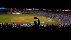 October Means Baseball and the World Series
