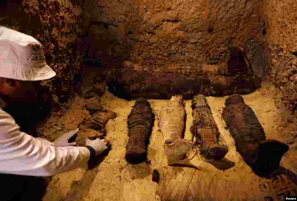 A Egyptian archaeologist examines mummies inside a tomb during the presentation of a new discovery at Tuna el-Gebel archaeological site in Minya Governorate, Egypt, Feb. 2, 2019.