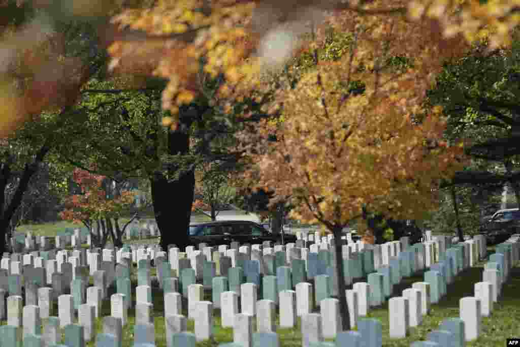 US President Barack Obama's limo arrives for a wreath-laying ceremony at the Tomb of the Unknown Soldier at Arlington National Cemetery in Arlington, Virginia to commemorate Veterans Day.
