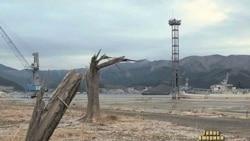 Японія чиститиме радіацію 30 років