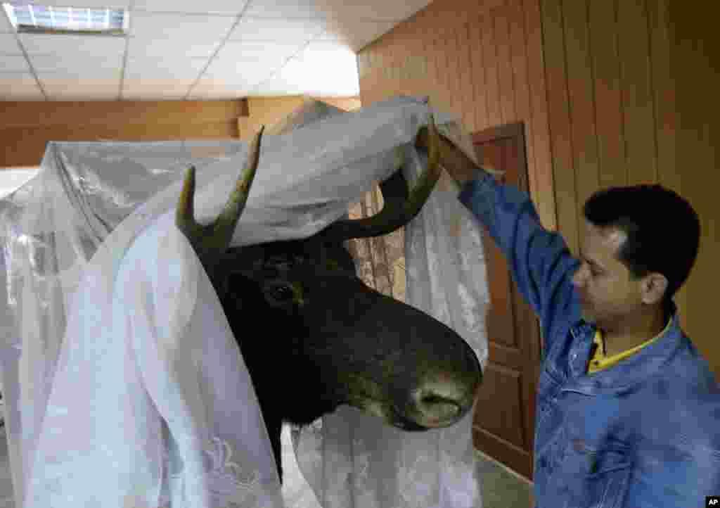 Волонтер показує експонат у музею Донецька, який постраждав від обстрілу.