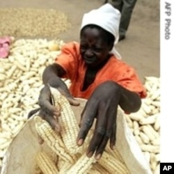 US assistance concentrates on boosting small scale farming in Africa.