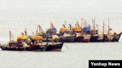 8일 인천시 옹진군 연평면 인근 해상에서 중국어선들이 불법조업을 하고 있다. 인천해양경비안전서에 따르면 이날 연평도 인근 해상에는 중국어선 156척이 출몰했다.