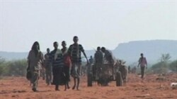 Somalia Famine Refugees Joined by Others Fleeing Insecurity