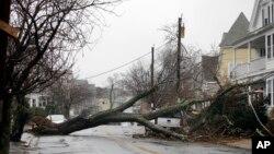 سقوط درختان روی سیم های برق اثر بادهای شدید موجب قطع برق در بسیاری از مناطق ساحل شرقی آمریکا شد.