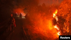 Monterey firefighters hold the line at the Rim Fire at night in this undated United States Forest Service handout photo near Yosemite National Park, California, released August 30, 2013.