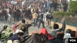 Kairo: Sukoba anti-vladinih demonstranata i pristalica Hosni Mubaraka