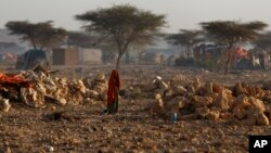 FILE - A Somali woman walks through a camp of people displaced from their homes elsewhere in the country by the drought, shortly after dawn in Qardho, Somalia, March 9, 2017.