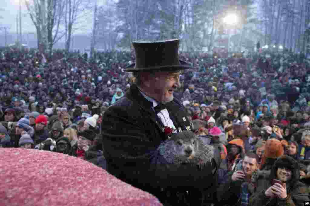 សហស្ថាបនិកក្លឹប Groundhog លោក John Griffiths កាន់សត្វមួយប្រភេទឈ្មោះ Punxsutawney Phil នៅក្នុងការប្រារព្ធខួបលើកទី១៣៤នៃទិវា Groundhog Day on Gobbler's Knob នៅក្នុងក្រុង Punxsutawney រដ្ឋ Pennsylvania សហរដ្ឋអាមេរិក។