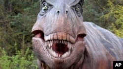 Replika dinosaurus Tyrannosaurus rex di Kebun Binatang Woodland Park di Seattle, Washington.