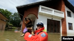 A Slovenian Civil Protection rescue worker saves a dog during heavy floods in the village of Prud, Bosnia-Herzegovina, May 20, 2014.
