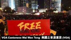 """香港民間人權陣線在中環愛丁堡廣場舉行""""G20 Free Hong Kong"""" 集會,參加者迫爆愛丁堡廣場 (攝影:美國之音記者湯惠芸)"""