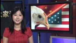 美国指责中国对美国鸡征收关税