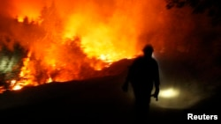 A firefighter is seen in this undated U.S. Forest Service handout photo near Yosemite National Park, California, released to Reuters August 30, 2013.