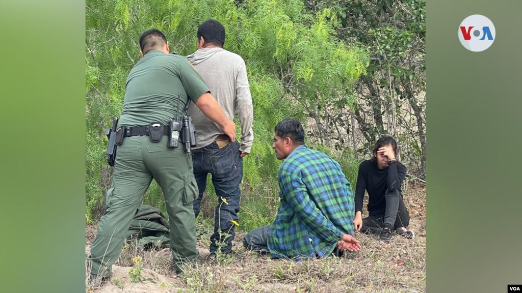 """Esta imagen, entregada a la Voz de América por el Dr. Vickers, muestra un grupo de personas detenidas luego de ser encontradas cruzando por su terreno en el área de Falfurrias. """"Esta gente es mucho más conflictiva y peligrosa y muchos de ellos son crimina"""