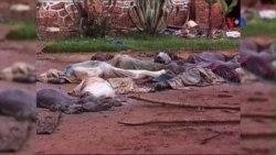 Mỹ rút ra bài học gì từ vụ diệt chủng Rwanda?