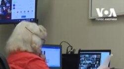 98-річна жінка з Флориди проводить віртуальні зустрічі жіночої групи. Відео