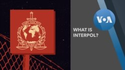 Explainer INTERPOL