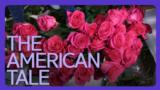 [아메리칸 테일] 힘들 땐 꽃 한송이를