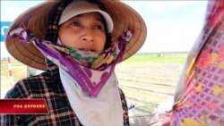 Nông dân Bắc miền Trung