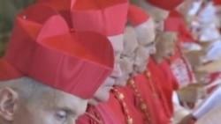 教宗方济各与枢机主教讨论教会改革