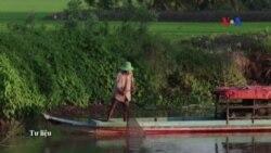 Đồng bằng sông Cửu Long bị hạn hán tồi tệ nhất 1 thế kỷ