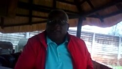 'I Met Tsvangirai Who Asked Me To Continue Working as Acting MDC-T President'
