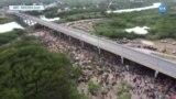 Meksika Sınırındaki Köprünün Altında Zorlu Koşullar
