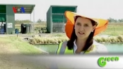 Green Waste Treatment in Australia