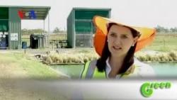 Green Waste Treatment in Australia