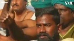 ԱՌԱՆՑ ՄԵԿՆԱԲԱՆՈՒԹՅԱՆ. Հնդկաստանի ֆերմերները բողոքում են հարկերի բարձրացման դեմ
