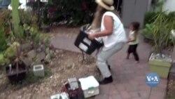 Історія успіху жінки-будівельниці, яка заснувала власну компанію у Каліфорнії. Відео