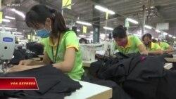 ILO kêu gọi VN phê chuẩn các công ước lao động thiết yếu