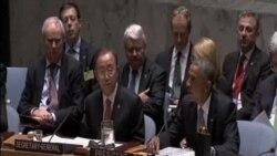 聯合國安理會通過有關外國戰鬥人員的決議