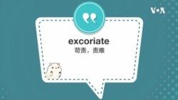 学个词 - excoriate