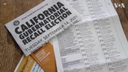 美加州州长罢免选举 候选人拼搏进入倒计时