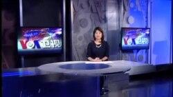 VOA卫视 (2013年11月02日 第二小时节目)