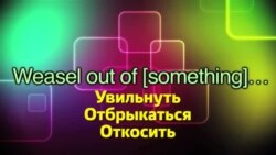 Английский за минуту - Weasel out of something - Увильнуть