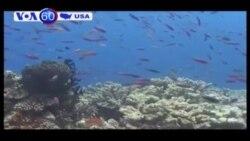 Tổng thống Obama loan báo kế hoạch bảo vệ Thái Bình Dương